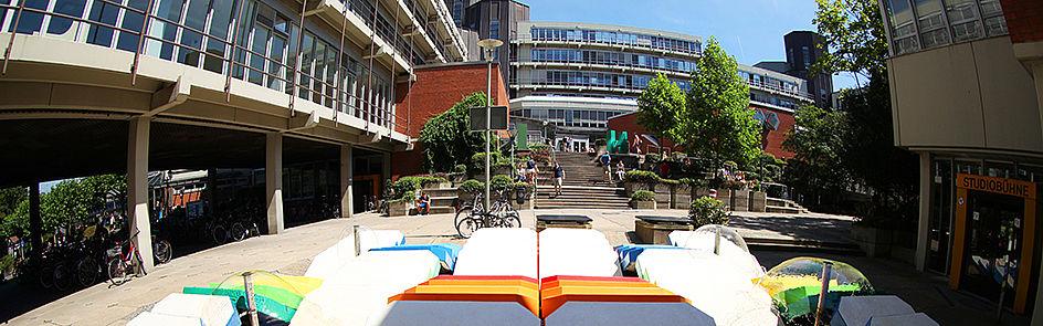 Summer on campus.