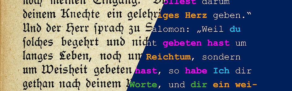 Die Evolution von komplexen Textmustern