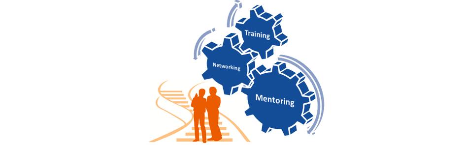 Die drei Elemente des Mentoring-Programms