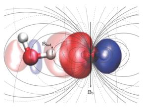 Abbildung: Das mikroskopische magnetische Feld, das zwischen benachbarten Wassermolekülen induziert wird.