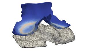 Abbildung (Zuse-Institut Berlin): Berechnete Kontaktspannung und Finite-Elemente-Gitter des Kniegelenkknorpels.