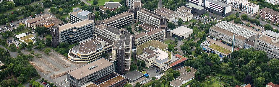 Einige Dächer der Gebäude sind begrünt und ergänzen die Parkanlagen.