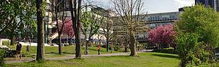 Wiese vor der Mensa (Foto: Universität Paderborn, Cinderella Welz)